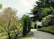 Visita Verbania e Villa Taranto, un patrimonio botanico - Verbania