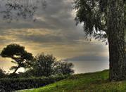 Лаванья, история,море и традиции - Lavagna