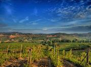 Entdecken Sie Chianti in der Toskana - Chianti