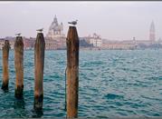 Acqua Alta in Venedig - Venezia