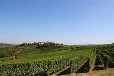 Tra Langhe e Monferrato