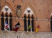 Siena, eine Stadt im Umtrieb - Siena