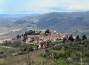 Inizia da Strada in Chianti il tuo viaggio nella magnifica campagna toscana - Strada in Chianti