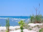 Las dunas - Ravenna