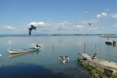 Vista sulla laguna