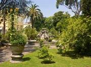 The Botanical Garden - Palermo