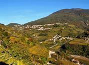 Faver: Ort im italienischen Trentino  - Faver
