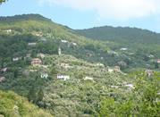 Rapallo, cidade banhada pelo Golfo de Tagullio - Rapallo