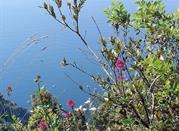 Agerola – pomiędzy morzem i górami - Agerola