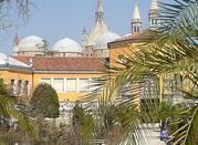 Padova's Botanical Garden - Padova