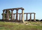 La località di Metaponto - Metaponto