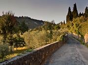 The surroundings of Florence: Fiesole - Fiesole