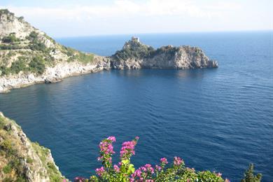 La natura presente sulla costa