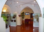 Le Marche's Accordion Museum - Castelfidardo