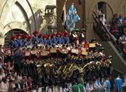 Il Palio di Siena - Siena