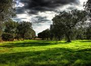 Un territorio de bellezas naturales donde nace el