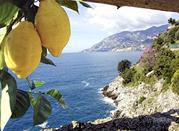 I colori di Sorrento, blu mare, giallo limone. - Sorrento