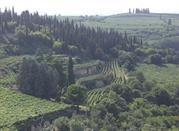 Soave – la città del vino e delle mura - Soave
