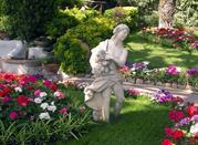 Visitare Capri e i meravigliosi giardini di Augusto - Capri