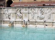 Siena: visitando los principales monumentos - Siena