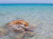 Muravera –in cerca delle spiagge caraibiche - Muravera