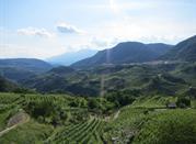 Val di Cembra ou la terre des pyramides de Trentino - Cembra