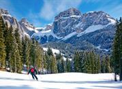 Escursioni in Val di Fassa - Acereto