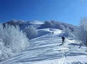 Campigna: la prima sciata nella natura più bella - Appennino Bolognese