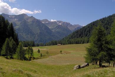 Un sentiero tra le montagne in estate
