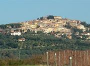 Castagneto Carducci, une oasis au cœur de la Toscane - Castagneto Carducci