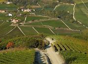 Monforte d'Alba, magico borgo di  storia, natura e cultura - Monforte d'Alba