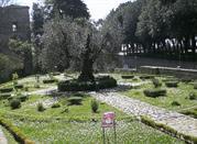 Perugia, Episode 2 – Orto Botanico Medioevale (Der mittelalterliche Klostergarten) - Perugia