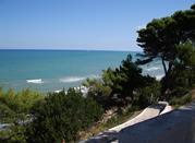 San Menaio – nel blu del mare e verde dei pini - San Menaio