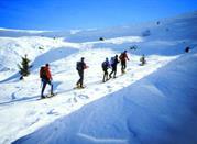 Livigno – Skigebiet im Steuerparadies - Livigno