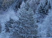 Reina del esquí nocturno  - Passo Penice