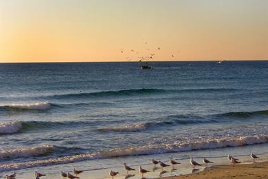 Tramonto bellissimo sulla spiaggia di Alassio