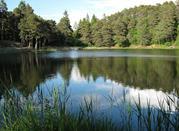 Levico Terme - le terme al lago - Levico Terme