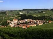 Barolo, il paese del vino - Barolo