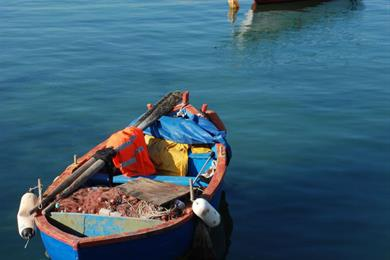 Boats in Molfetta
