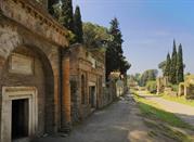 Pompei – die konservierte Katastrophe - Pompei