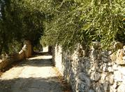 San Menaio, centro balneare accanto della città di amore - San Menaio