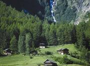 Mezzana una stupenda valle! - Mezzana in Val di Sole
