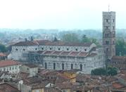 St Martin's Cathedral - Lucca