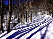 La serenidad de esquiar en Pizzoferrato - Pizzoferrato