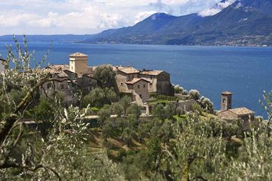 olivi, natura, tradizione e lago