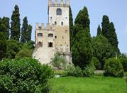 Conegliano: the way of wine - Conegliano