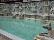 Fonte Gaia il Campo - Siena