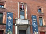 Museo Civico di Storia Naturale - Ferrara