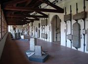 Museo di storia naturale faraggiana ferrandi  - Novara