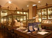 Museo per la Storia dell'Università di Pavia - Pavia